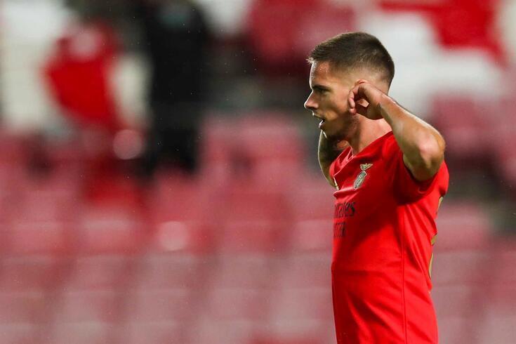 Weigl, médio do Benfica