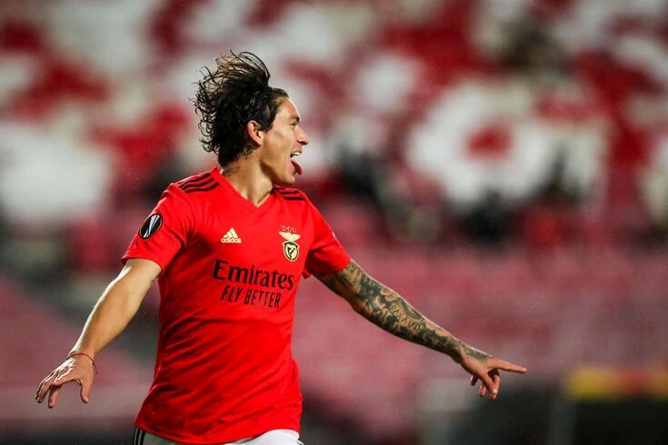 Darwin Nuñez, avançado do Benfica