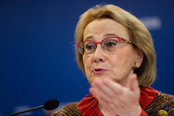 A diretora-geral da Saúde, Graça Freitas
