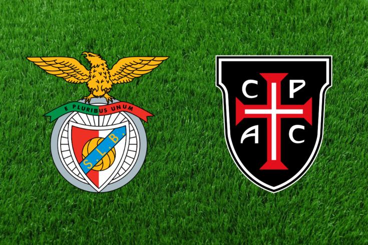 DIRETO | Jogo de preparação: Benfica-Casa Pia