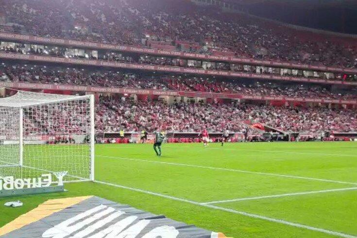 Darwin bisa no Benfica-Boavista. Assista ao golo