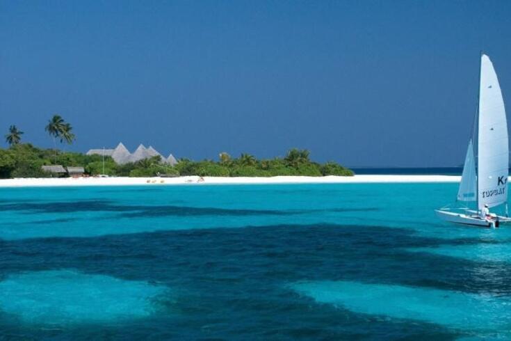 Resort nas Maldivas oferece viagem e estadia se ajudar no resgate de tartarugas