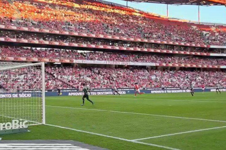 Darwin abre o marcador no Benfica-Boavista. Assista ao vídeo