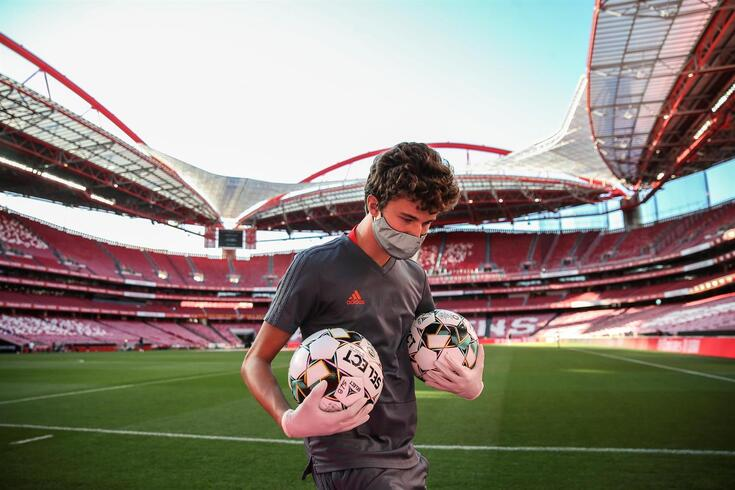 Benfica registou 17 novos casos de covid-19