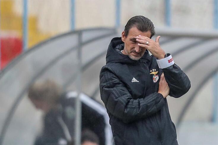 Luís Andrade, treinador da equipa de futebol feminino do Benfica