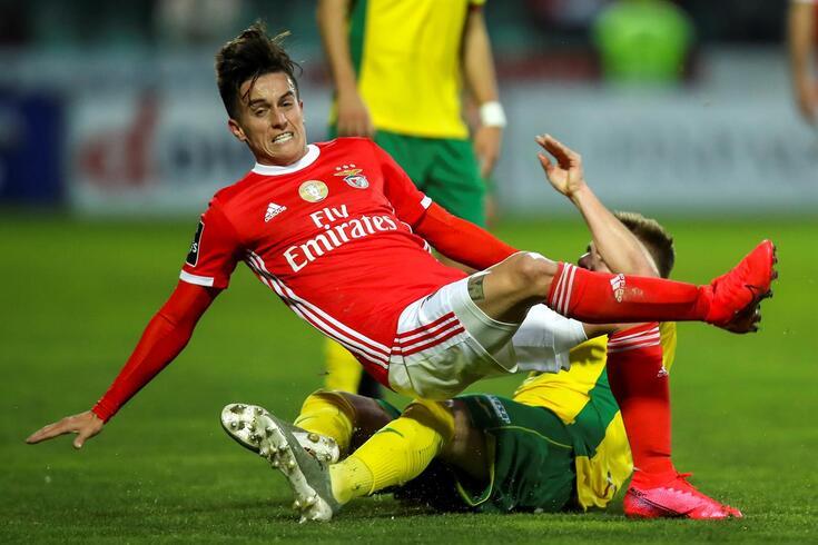 Cervi tem sido titular na equipa do Benfica