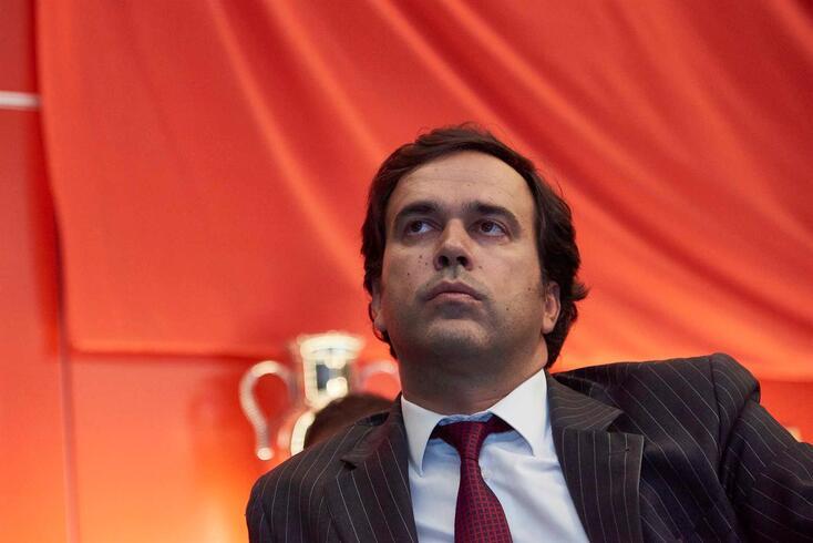 Miguel Moreira, administrador da SAD do Benfica