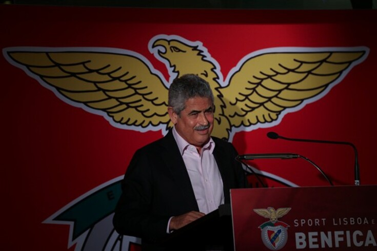 AG da SAD do Benfica aprova contas com lucro de sete milhões