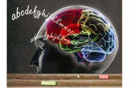 Cérebro modifica-se quando aprende a ler
