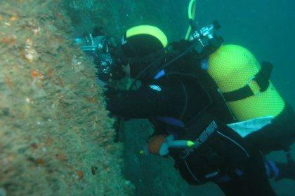 Descoberto baleeiro do capitão da Moby Dick