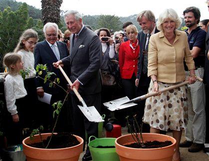 O casal real plantou rosas em vasos