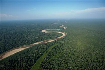 Amazónia pode vir a agravar efeito de estufa