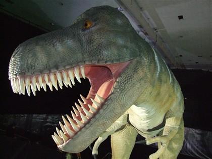 Dinossáurios eram mesmo animais de 'sangue quente'