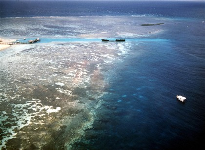 Grande Barreira de Coral já perdeu metade dos corais