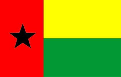 Jornalista da RTP expulso de Bissau regressa a Portugal