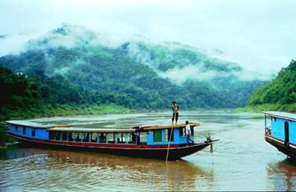 126 novas espécies descobertas no Grande Mekong