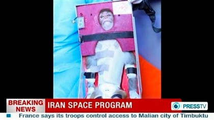 Macaco que Irão diz ter enviado ao espaço já voltou