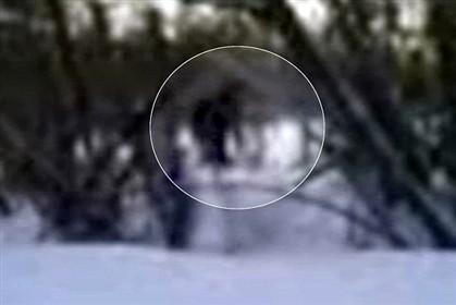 São várias as imagens de alegados avistamentos do yeti