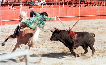 Número de touradas em Portugal foi mais baixo de sempre