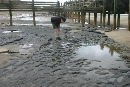Descobertas pegadas humanas com 800 mil anos