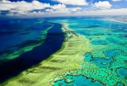 Grande Barreira de Coral pode sofrer danos irreparáveis