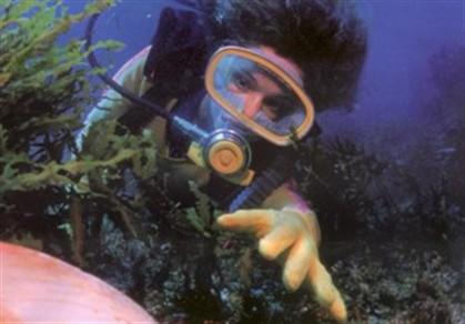 Oceanografia está a perder investigadores