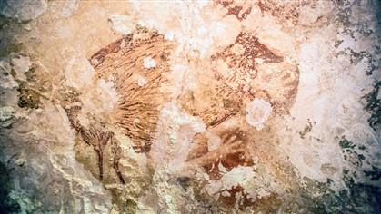 Uma imagem geral de parte das pinturas