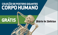 Posters Corpo Humano GR�TIS