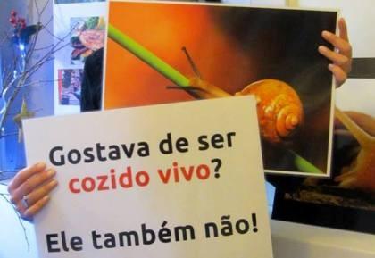 Associação lança campanha contra o consumo de caracóis