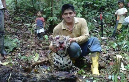 Matou um jaguar no Equador. E mostrou no Facebook. Agora foi condenado a seis meses de prisão