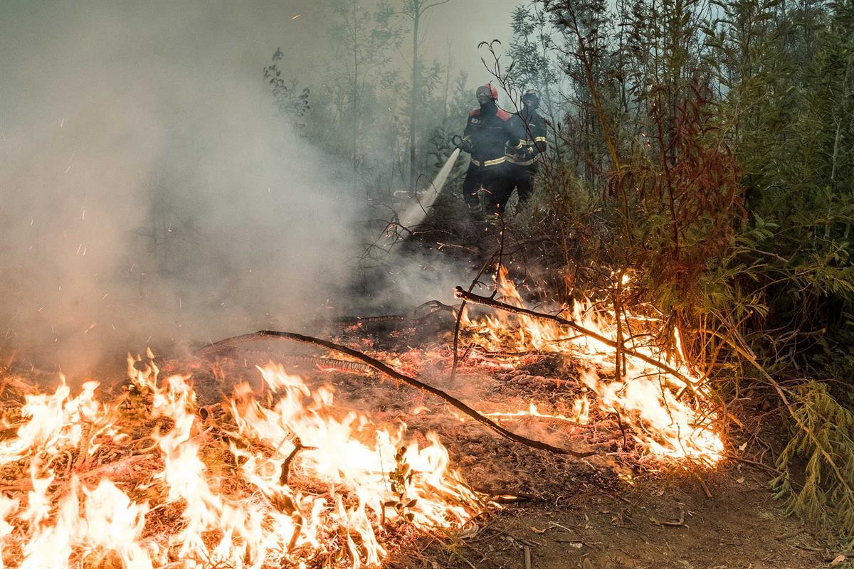 Resultado de imagem para Perigo de Incêndio Rural durante o fim-de-semana: medidas preventivas