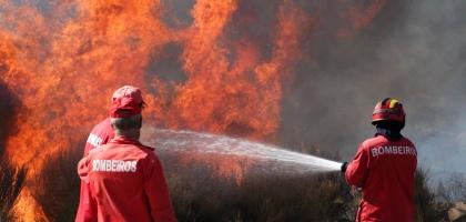 CO2 dos fogos equivale a 29 milhões de carros a fazer viagem Lisboa-Porto