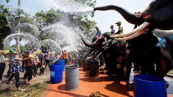 2a21b1a84b Elefantes refrescam a população nas boas-vindas ao novo ano tailandês