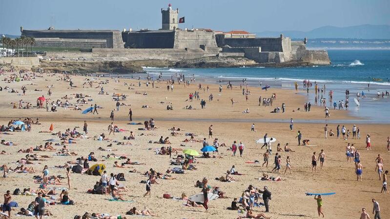 Resultado de imagem para Praia do Tamariz e parte da praia de Carcavelos fechadas a banhos. Algas não são iguais às microalgas detetadas no Algarve