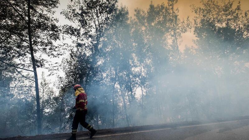 Mais de uma centena de operacionais combatem fogo em ...